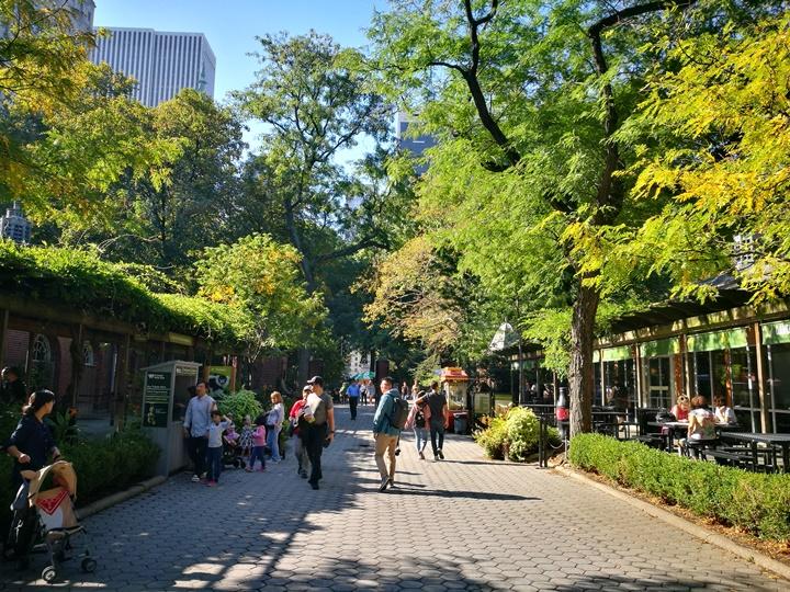 centralpark44 New York-果真大蘋果之紐約真好玩 中央公園 躺著曬太陽也愜意的好所在