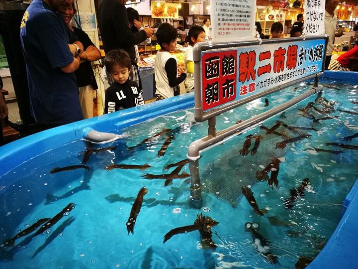hakodatemorningmarket09 Hakodate-有趣函館朝市 きくよ食堂的海鮮丼飯 北海道必吃