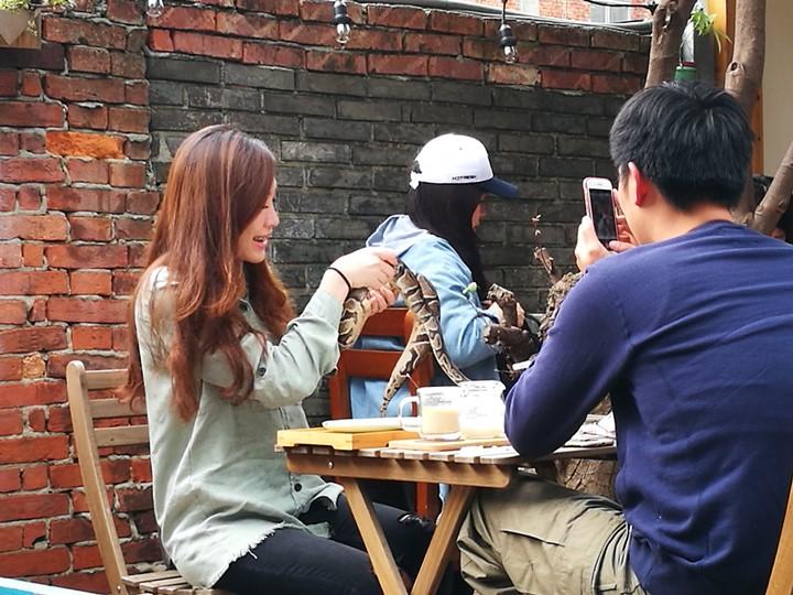 wethey29 中壢-我們他們咖啡 老街溪旁老屋屬於大家的咖啡館