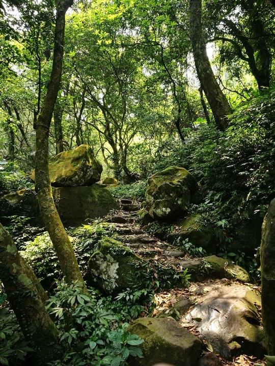 chingshanwaterfall27 石門-青山瀑布步道 輕鬆愜意舒適賞瀑布