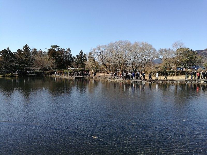 kinrinko23 Yufuin-金鱗湖 由布院第一美景 飄渺夢幻的小池塘