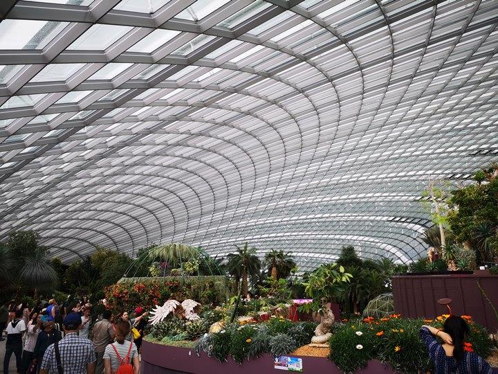 gardens-by-the-bay07 Singapore-Gardens by the Bay之Flower Dome/Cloud Forest新加坡的巨大溫室...盛夏最好的去處