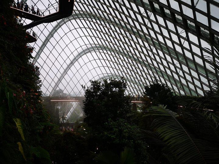 gardens-by-the-bay54 Singapore-Gardens by the Bay之Flower Dome/Cloud Forest新加坡的巨大溫室...盛夏最好的去處