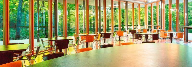 karuizawafood0110 Karuizawa-中輕井澤 星野地區村民食堂 藏在綠意中的好吃餐廳