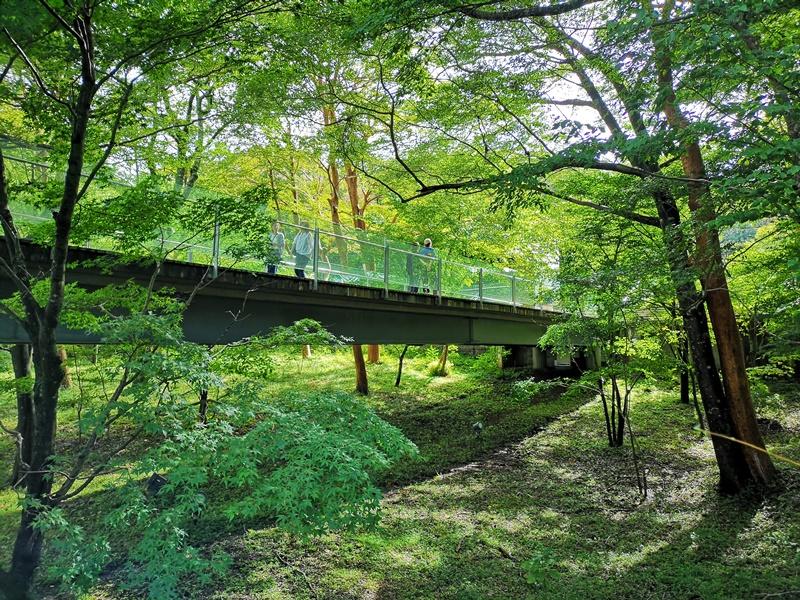 polamuseum22 Hakone-箱根Pola Museum of Art森林中的綠寶石 自然與人文兼具的美術館