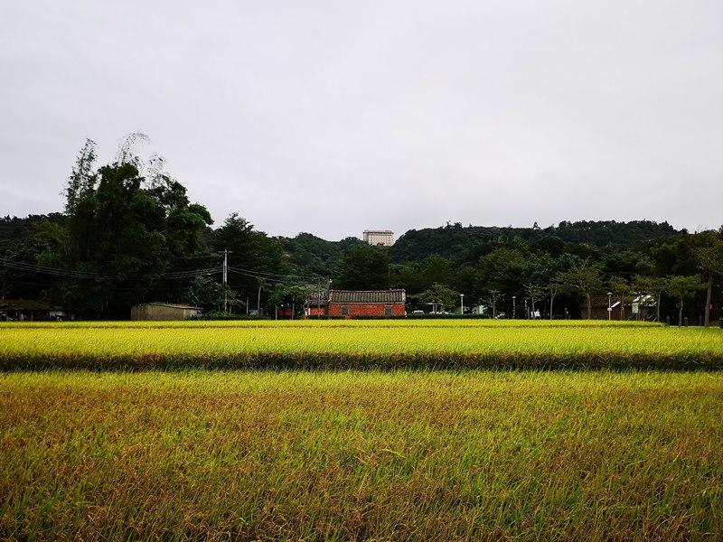 litangfeng31 大溪-李騰芳古宅 桃園唯一國定古蹟 清幽的環境寯永的建築設計
