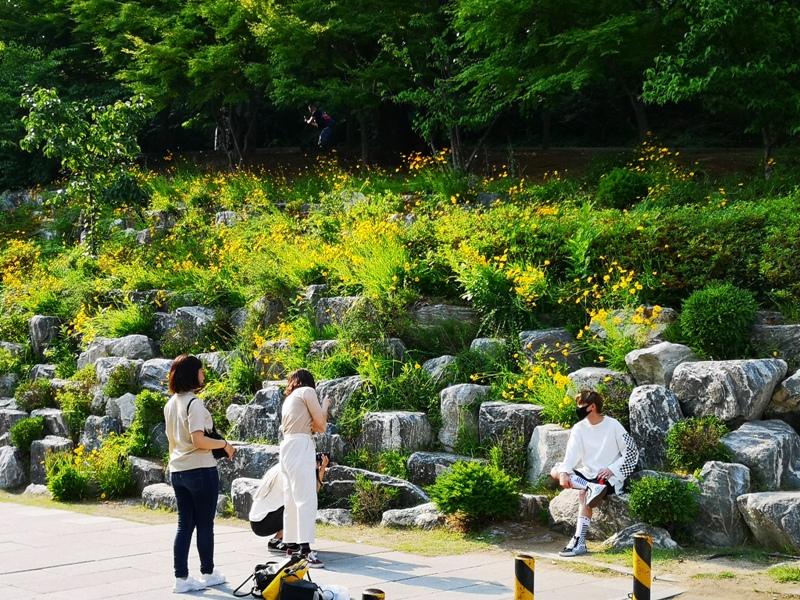 ewhau05 Seoul-梨花女子大學 韓國名校首爾必訪 優雅美麗的校園景色慢慢逛