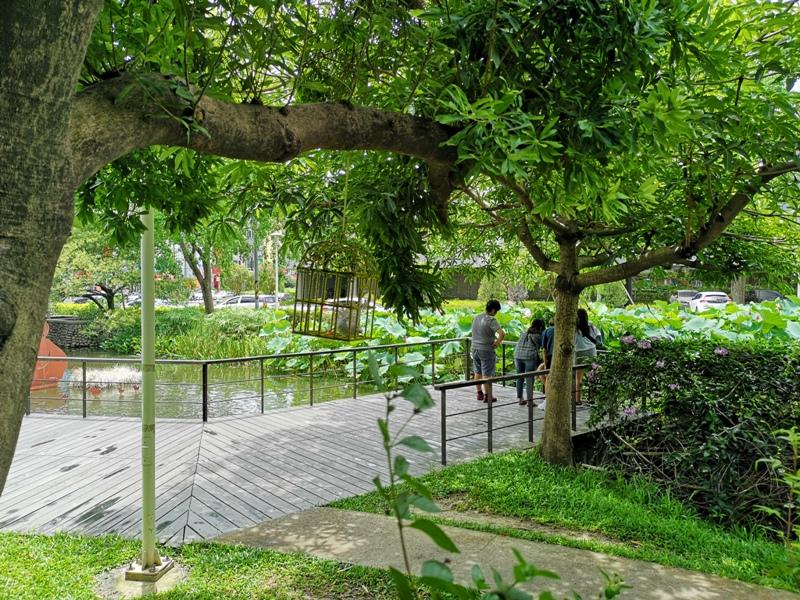redbrick17 竹北-新瓦屋紅瓦紫藤 在花園也是花園的超綠意咖啡館