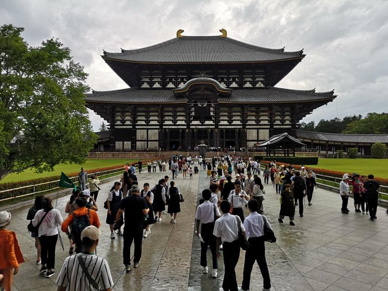 todaiji04 Nara-奈良小旅遊 世界文化遺產 東大寺&春日大社 搶食仙貝的小鹿亂撞