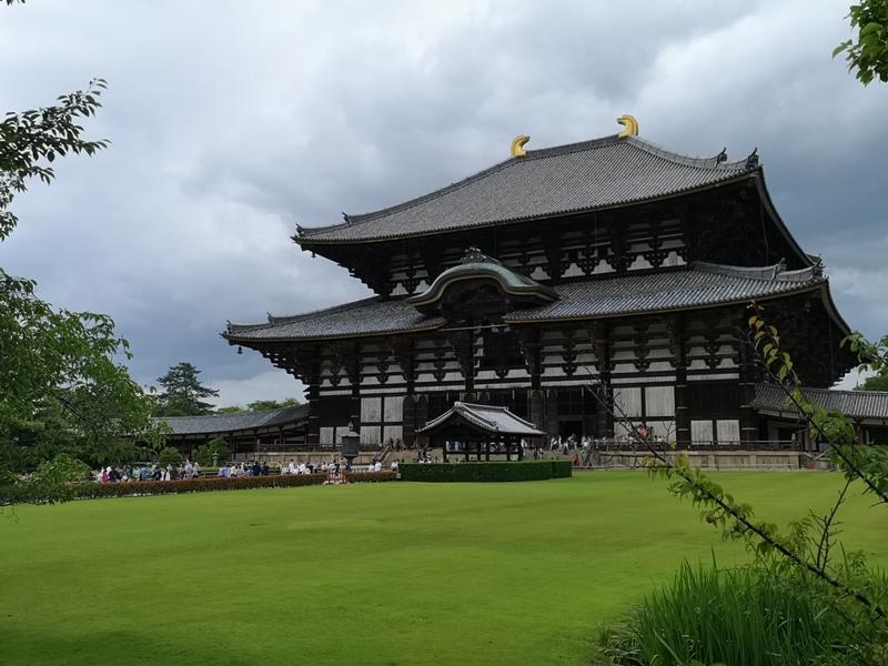 todaiji23 Nara-奈良小旅遊 世界文化遺產 東大寺&春日大社 搶食仙貝的小鹿亂撞