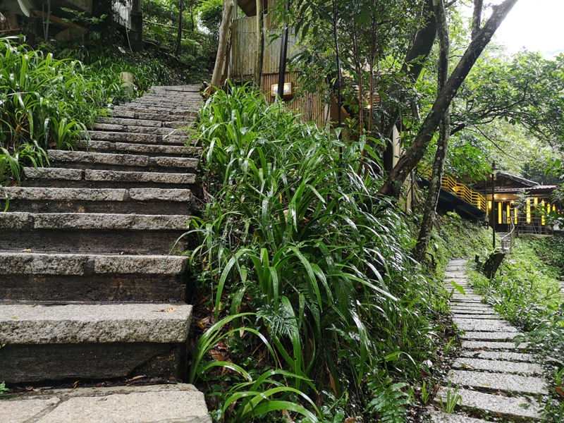 yyteahouse23 文山-貓空邀月茶坊 雨中的清涼 蛙鳴鳥叫的陪伴 一個下午的悠閒