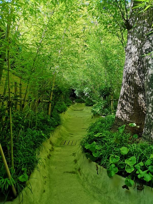 Kinomiya03 Atami-熱海不只有溫泉 兩千年神木坐鎮 有拜有保佑的來宮神社