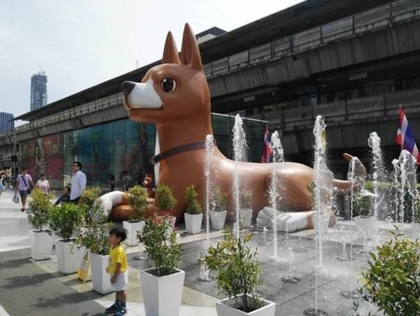 BACC15 Bangkok-BACC曼谷藝術文化中心 陶冶文藝氣息吹免費冷氣