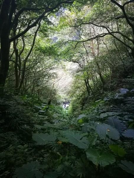 IMG_20160924_171308 礁溪-林美石磐步道 輕輕鬆鬆林間漫步
