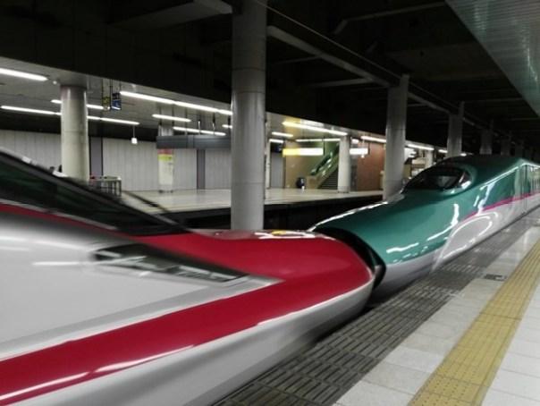 JRPass20 Tokyo-JR East Pass Flexible 5 Day東日本通票 即將改版(兩星期任選5天使用)