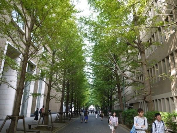 WASEDA170121 Waseda-都電荒川線散策之早稻田大學&鬼子母神社
