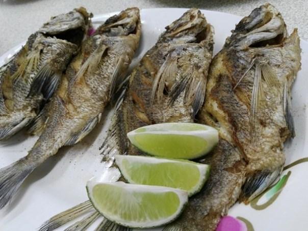 chunanseafood3 竹南-阿標海產店 新鮮好味道