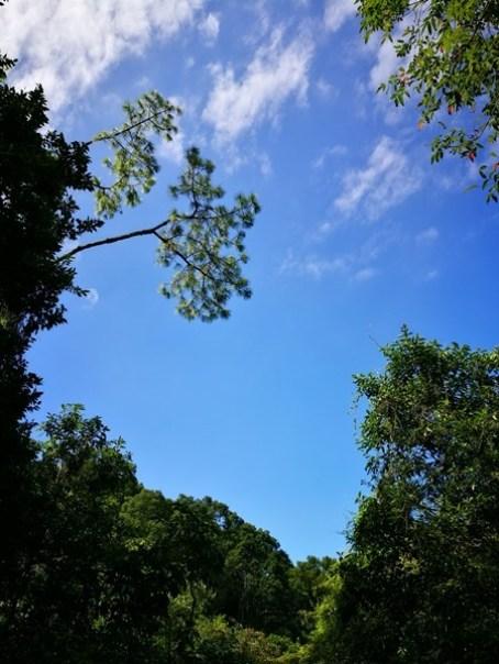 cihu07 大溪-後慈湖 清幽舒適彷彿桃花源的秘境