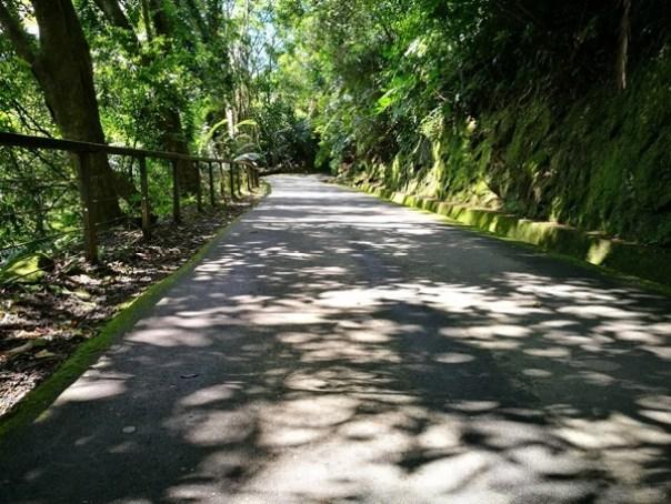 cihu13 大溪-後慈湖 清幽舒適彷彿桃花源的秘境