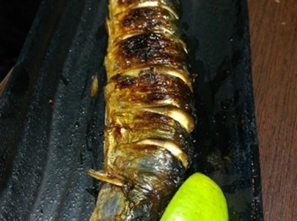 colordon10 中壢-築地鮮魚 Sogo旁 夠意思的三色丼
