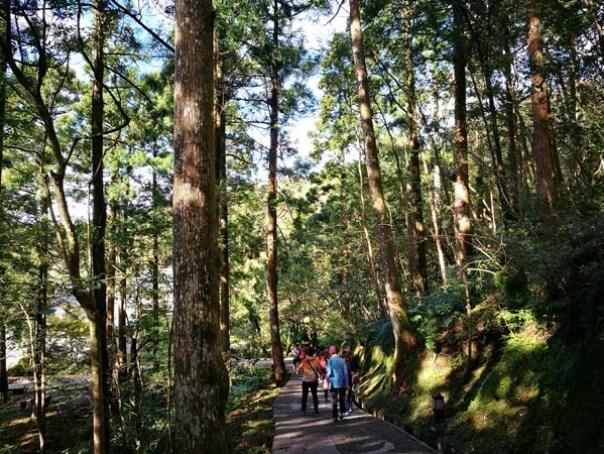 dongyen04 復興-東眼山 藍天白雲青山綠樹...景色壯觀視野開闊...還有美麗的彩虹