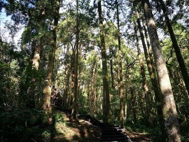 dongyen07 復興-東眼山 藍天白雲青山綠樹...景色壯觀視野開闊...還有美麗的彩虹