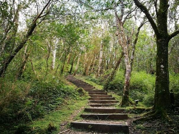 dongyen15 復興-東眼山 藍天白雲青山綠樹...景色壯觀視野開闊...還有美麗的彩虹
