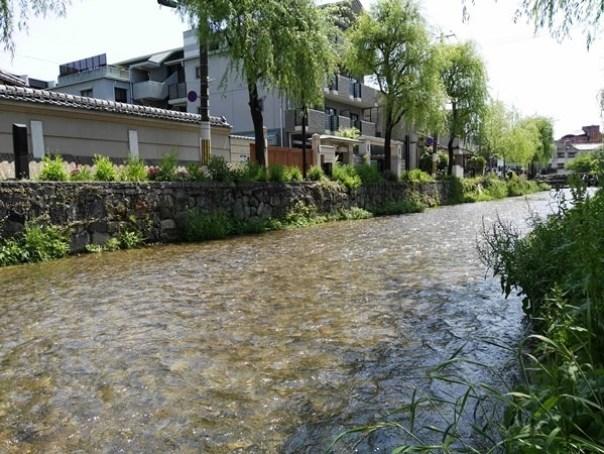 gion06 Kyoto-祇園饅頭 林 鶴遊堂 兩百年的京都和菓子店