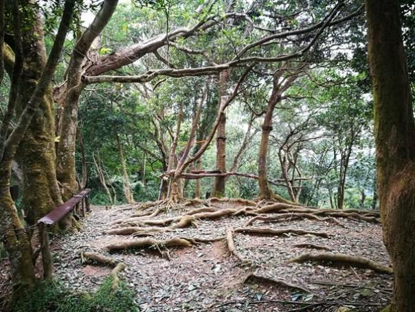 shimenmt22 龍潭-石門山 老少咸宜的小百岳