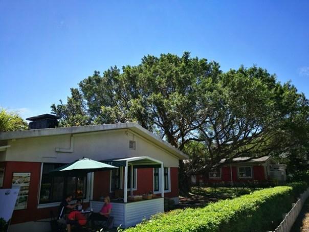 yanic23 士林-陽明山美軍宿舍群 亞尼克夢想村 這一整個在美國吧