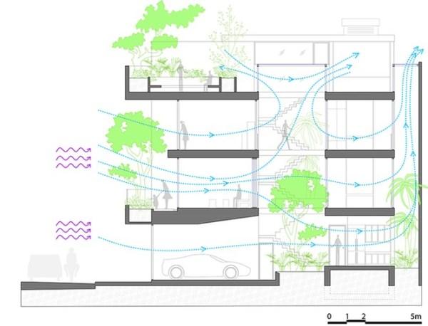 Nhà phố giống như ốc đảo xanh ở Nha Trang - ảnh 19
