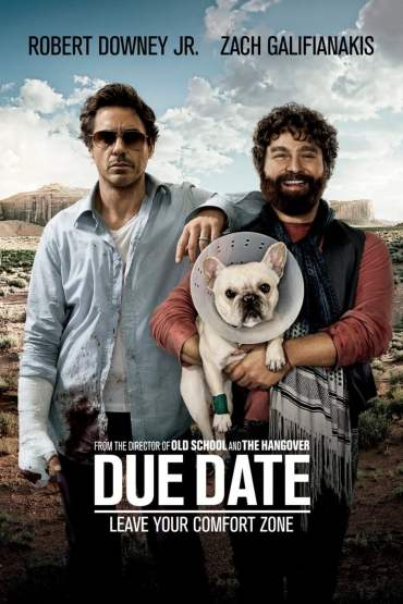 Download Due Date (2010) Dual Audio {Hindi-English} 480p [300MB] || 720p [700MB