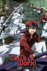 Nonton anime Hataraku Saibou Black (TV) Sub Indo