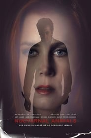 Poster Movie Nocturnal Animals 2016