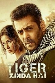 Tiger Zinda Hai 2017 Hindi Movie BluRay 400mb 480p 1.4GB 720p 5GB 12GB 17GB 1080p