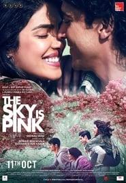 The Sky Is Pink 2019 Hindi Movie WebRip 300mb 480p 1.2GB 720p 4GB 1080p