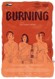Risultati immagini per burning l amore brucia