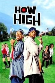 How High 2001 Movie NF WebRip Dual Audio Hindi Eng 300mb 480p 900mb 720p 3GB 4GB 1080p