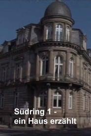 Südring 1 - ein Haus erzählt