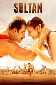 Sultan 2016 Hindi Movie BluRay 400mb 480p 1.5GB 720p 5GB 14GB 18GB 1080p