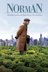Norman: The Moderate Rise and Tragic Fall of a New York Fixer [2017]