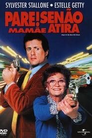 Pare! Senão mamãe atira Torrent