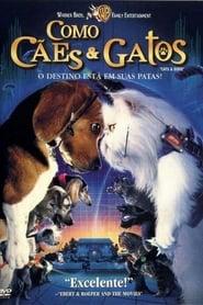 Como Cães e Gatos Torrent