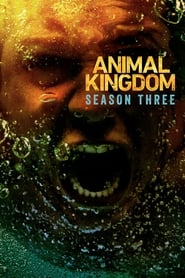Animal Kingdom 3ª Temporada