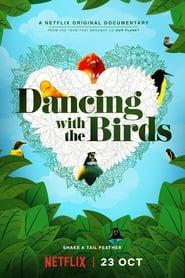 Dança dos Pássaros