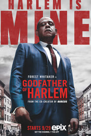 Godfather of Harlem 1ª Temporada
