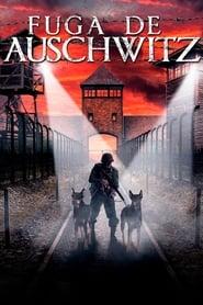 Fuga de Auschwitz Online