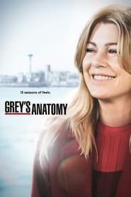 Grey's Anatomy 15ª Temporada