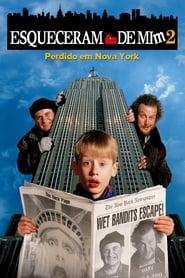 Esqueceram de Mim 2 – Perdido em Nova York