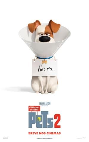 Poster Pets: A Vida Secreta dos Bichos 2 HD Online.
